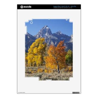 Aspen trees with the Teton mountain range 6 Decals For iPad 3