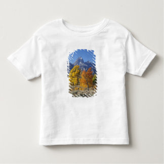 Aspen trees with the Teton mountain range 6 Toddler T-shirt