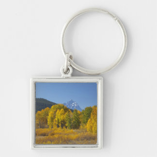 Aspen trees with the Teton mountain range 7 Silver-Colored Square Keychain