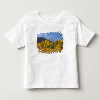 Aspen trees with the Teton mountain range 7 Toddler T-shirt