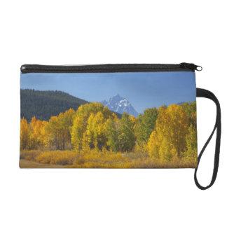 Aspen trees with the Teton mountain range 7 Wristlet