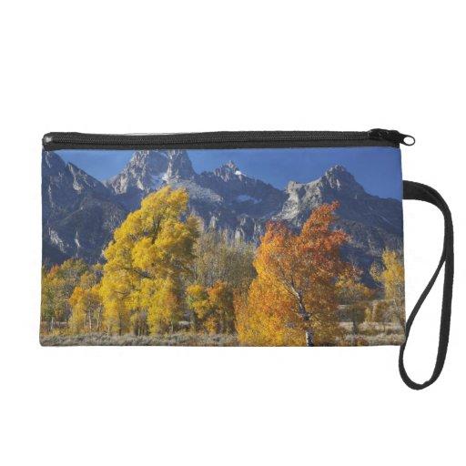 Aspen trees with the Teton mountain range Wristlet Clutches