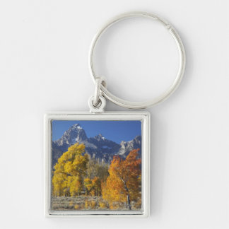 Aspen trees with the Teton mountain range Silver-Colored Square Keychain