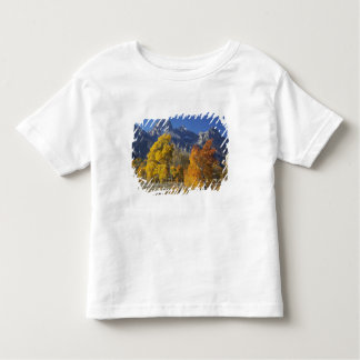 Aspen trees with the Teton mountain range Toddler T-shirt