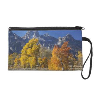 Aspen trees with the Teton mountain range Wristlet Purse