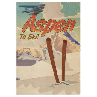 Aspen USA Vintage ski travel poster