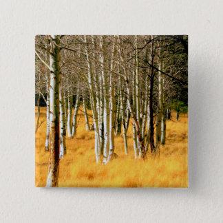aspen woods button