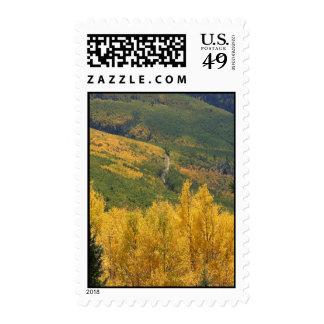 Aspens_037 Postage Stamp