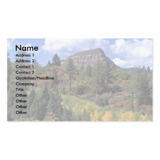 Aspens, Colorado Rockies Double-Sided Standard Business Cards (Pack Of 100)