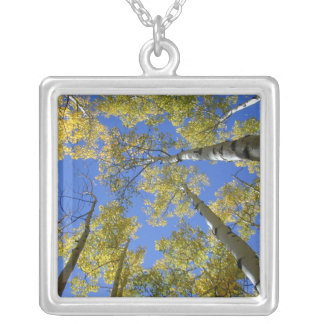 Aspens from Below necklace