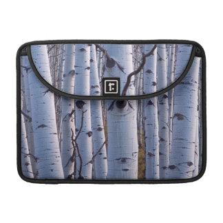 Aspens In Gunnison National Park MacBook Pro Sleeve