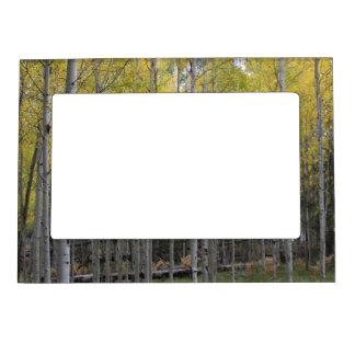 Aspen's yellow glow magnetic photo frame
