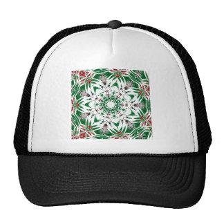 Asperja diciembre de 2012 gorras de camionero