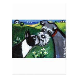 Aspiración de Boston Terrier y del Schnauzer Postales