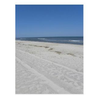 Assateague Beach Postcard
