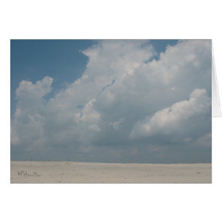 Assateague Island National Seashore Card