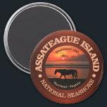 "Assateague Island National Seashore Magnet<br><div class=""desc"">Assateague Island National Seashore,  Maryland &amp; Virginia Coast.</div>"
