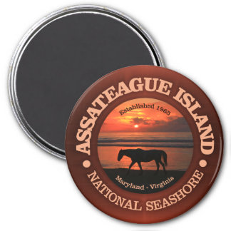 Assateague Island National Seashore Magnet