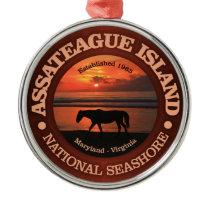 Assateague Island National Seashore Metal Ornament
