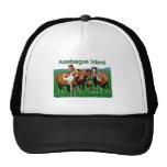 Assateague Island (pony family) Hats