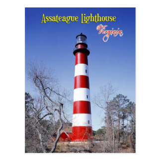 Assateague Lighthouse, Virginia Postcard
