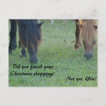 Assateague ponies Christmas cards and stamps