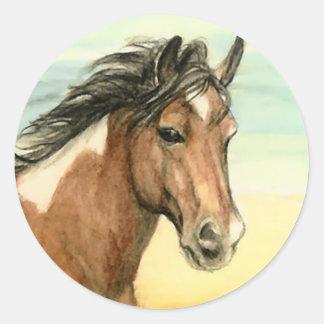 """Assateague Pony"" Horse Art Sticker"