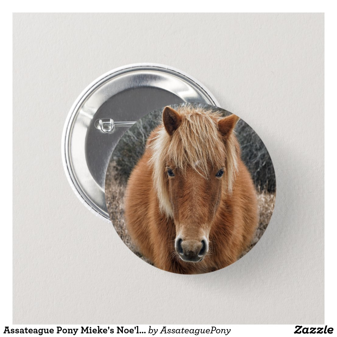 Assateague Pony Mieke's Noe'lani Pinback Button