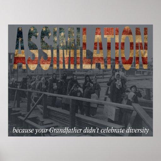 Assimilation Print