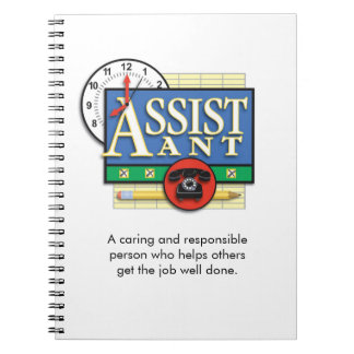 """""""Assistant"""" Notebook"""