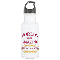 Assistant Principal Stainless Steel Water Bottle