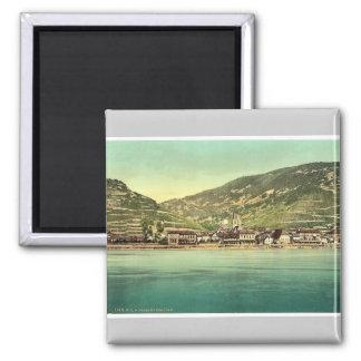 Assmannshausen, the Rhine, Germany rare Photochrom Magnet