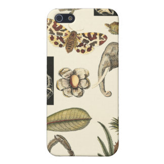 Assorted Animals Painted on Cream Background Case For iPhone SE/5/5s