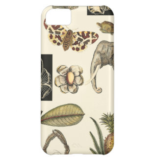 Assorted Animals Painted on Cream Background Cover For iPhone 5C