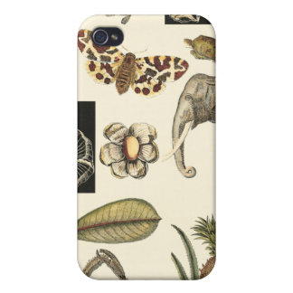 Assorted Animals Painted on Cream Background iPhone 4/4S Cover