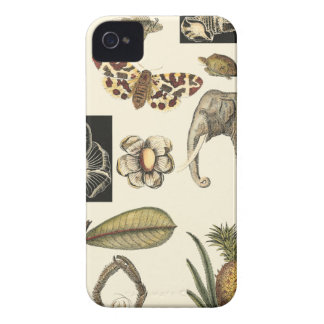 Assorted Animals Painted on Cream Background iPhone 4 Case