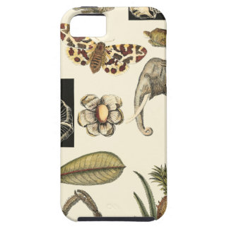 Assorted Animals Painted on Cream Background iPhone SE/5/5s Case