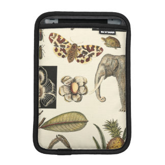 Assorted Animals Painted on Cream Background Sleeve For iPad Mini