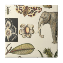 Assorted Animals Painted on Cream Background Tile