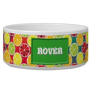 Assorted citrus pattern pet bowl