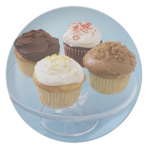 Assorted cupcakes 2 party plates