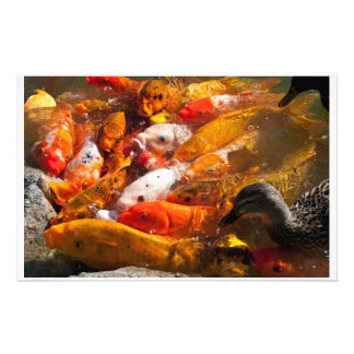 assorted fish stationary personalized stationery