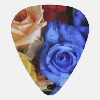 Assorted fresh rose bouquets guitar pick