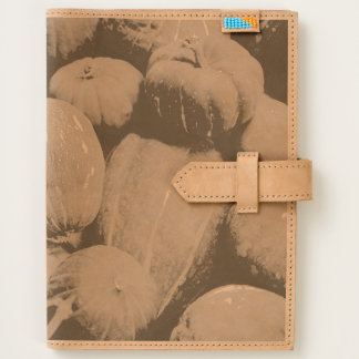 Assorted pumpkins journal