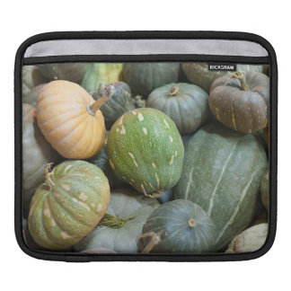 Assorted pumpkins sleeve for iPads