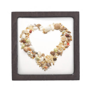 Assorted seashells form heart shape gift box