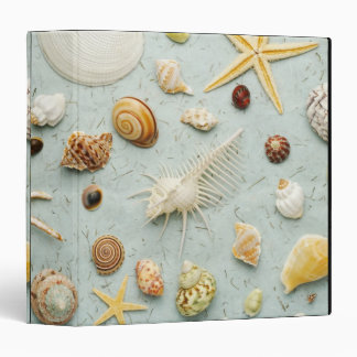 Assorted seashells on blue background binder