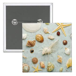 Assorted seashells on blue background pin