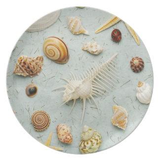 Assorted seashells on blue background melamine plate