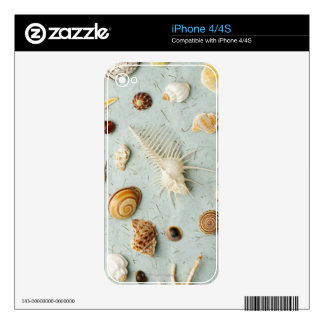 Assorted seashells on blue background decals for the iPhone 4S